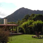 view of cerro punta from backyard